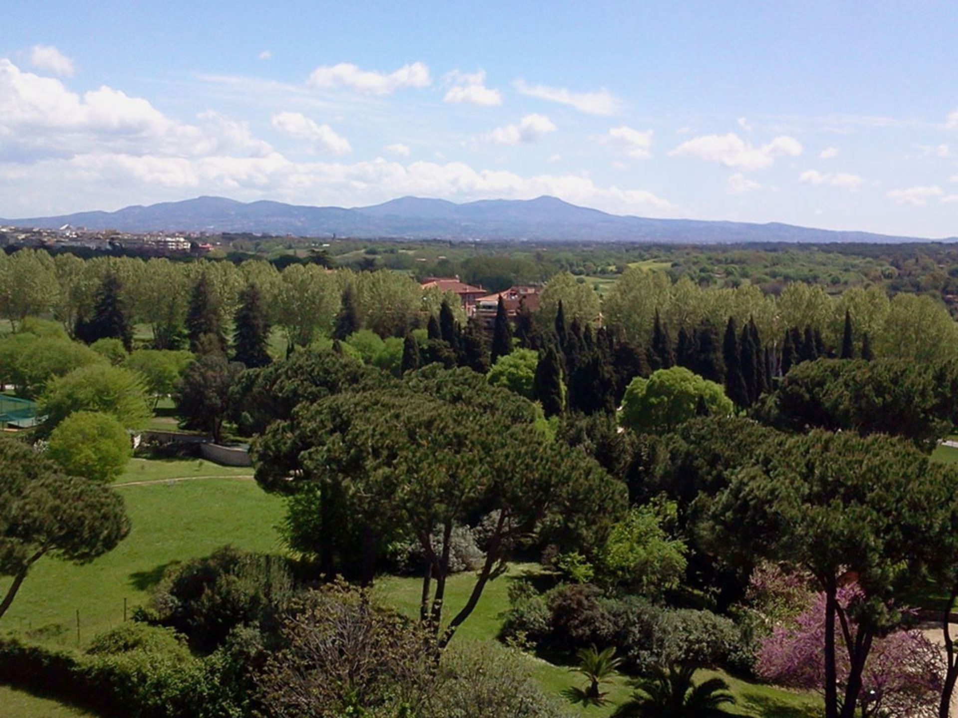 appian-way_Italy-Tour-With-Theresa_03